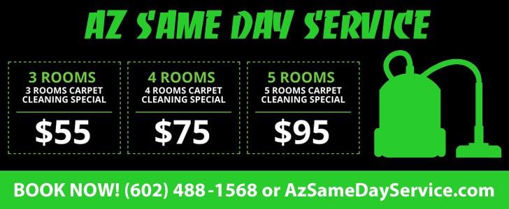11.27 Living Room - AZ Same Day Service